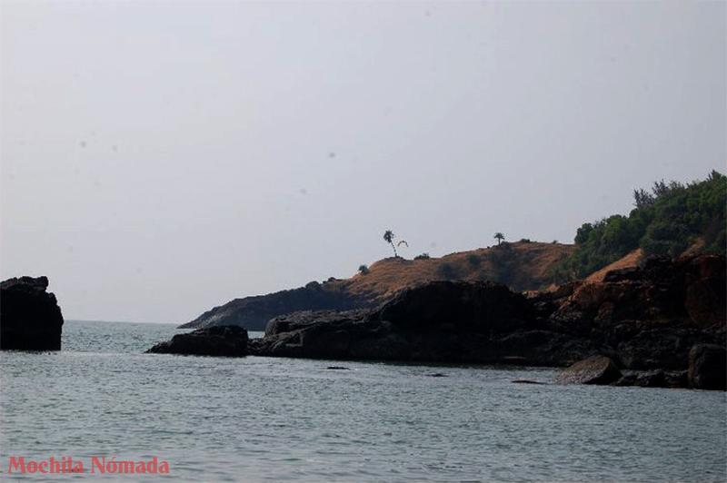 La palmera solitaria desde Kudle Beach