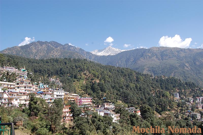 Vistas al Himalaya desde el Guest House de MacLeod Ganj