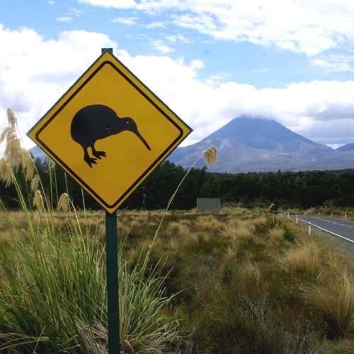 WHV Nueva Zelanda 2014