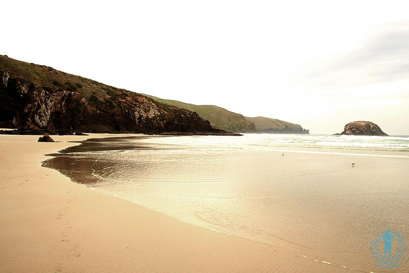 allan-beach-3
