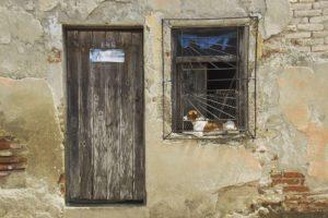 Una puerta Una ventana Un perro Una descripcin muy obviahellip