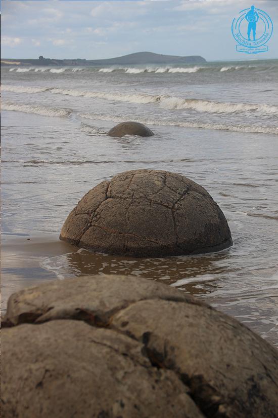 moeraki-boulders-playa-7