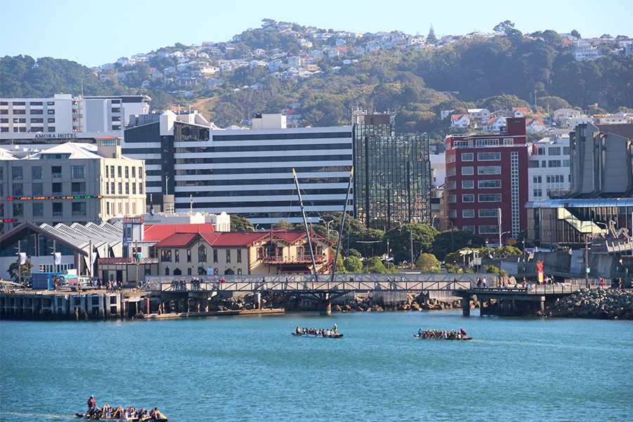 ferry-nueva-zelanda-8