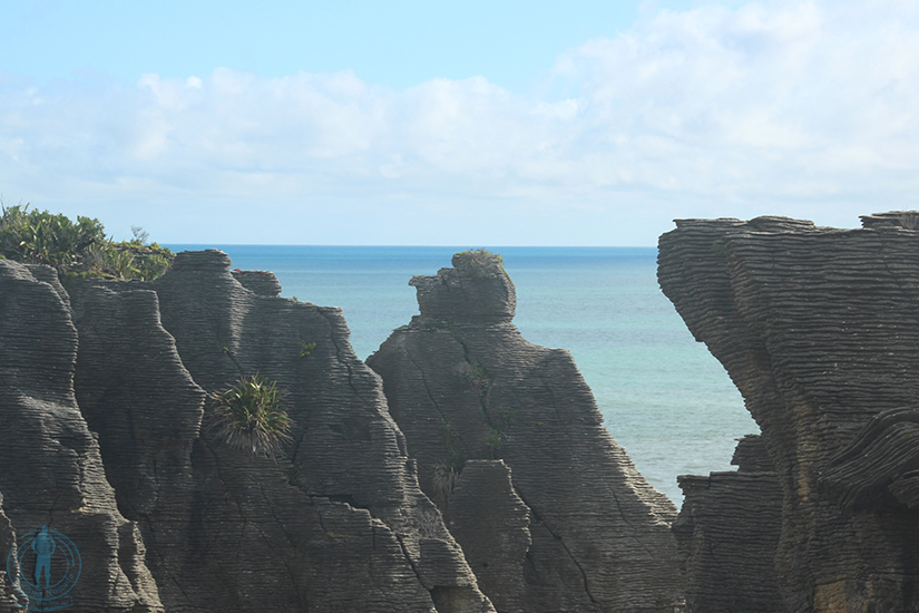 pancake-rocks-nueva-zelanda-7