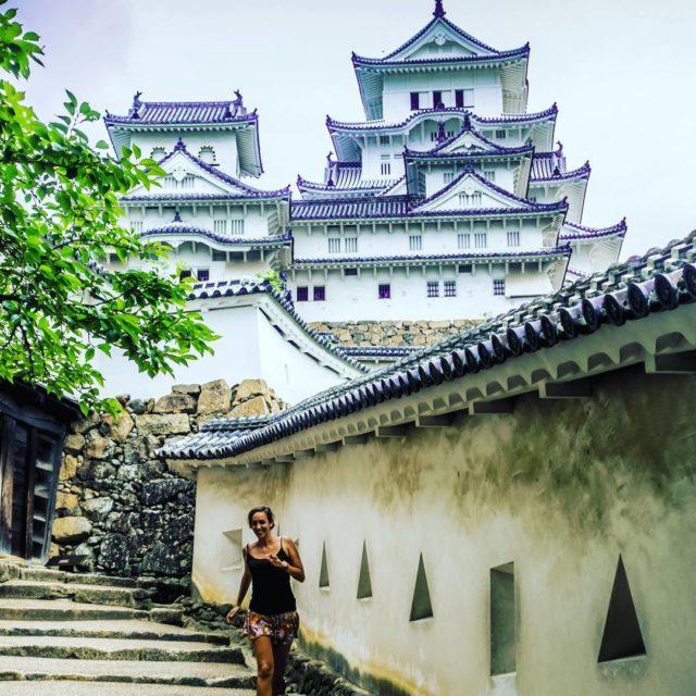 Justo al entrar al castillo de Himeji la Garza Blancahellip